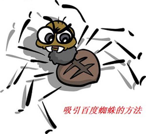 百度蜘蛛提高网站的收录比有哪些技巧?